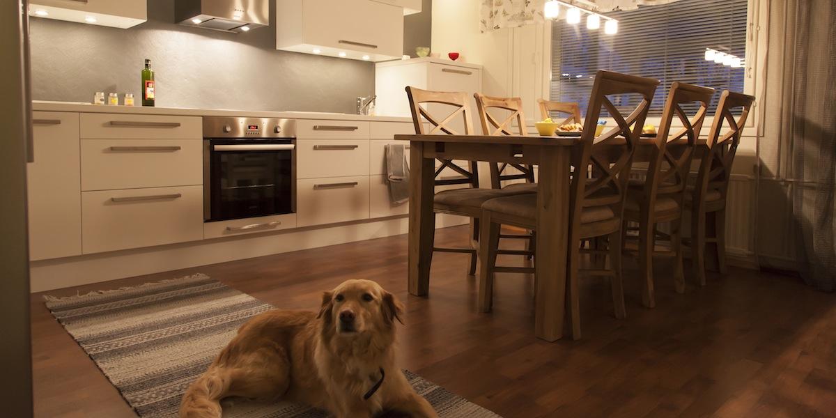 Keittiöremontti kokemuksia – Rakentaminen talons