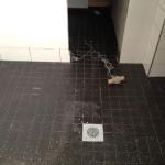 Kylpyhuoneen laatoitus